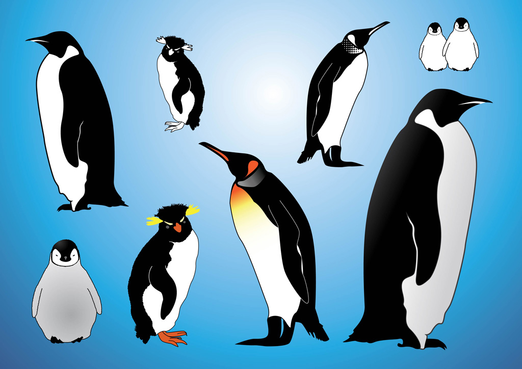 14 Free Penguins Vector Images