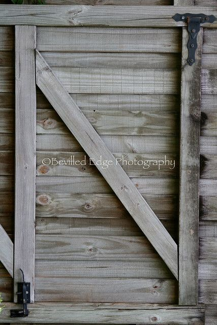 Nature Alphabet Photography Letter N