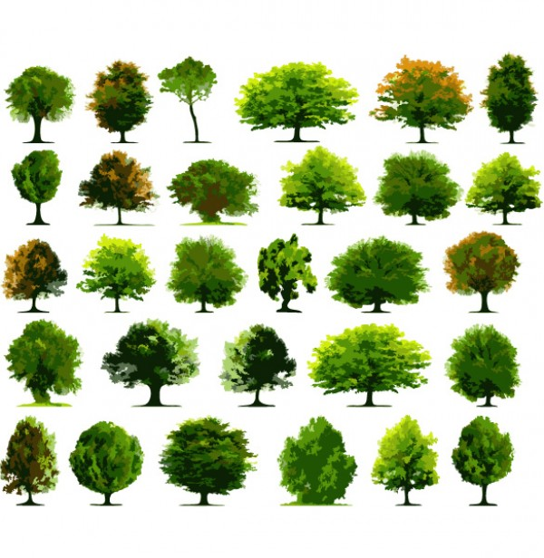 15 Tree Vector PSD Images
