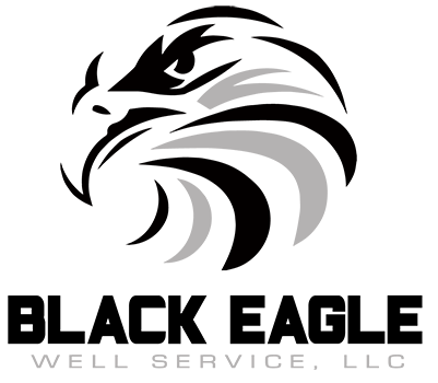 11 eagle imagry logo design images black and white eagle