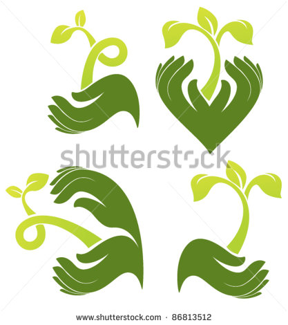 Image of Plant Growing in Human Hand