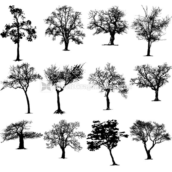 Vector Tree Silhouettes Clip Art