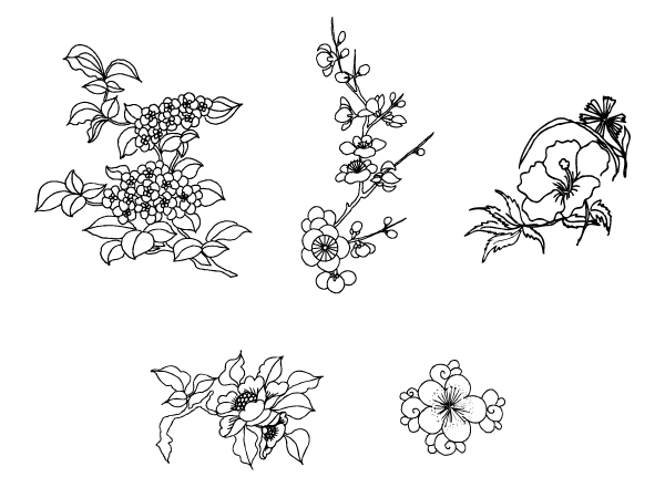 19 Outline Flower Vector Images , Lily Flower Drawing