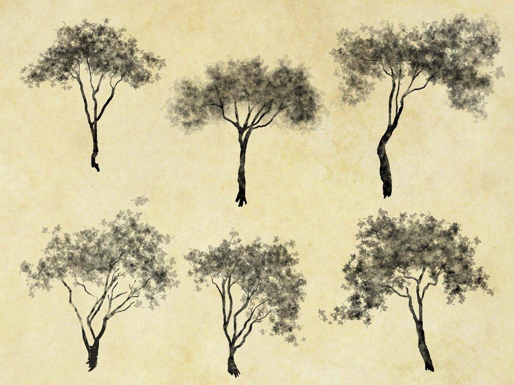 11 Photoshop Tree Cutout Images