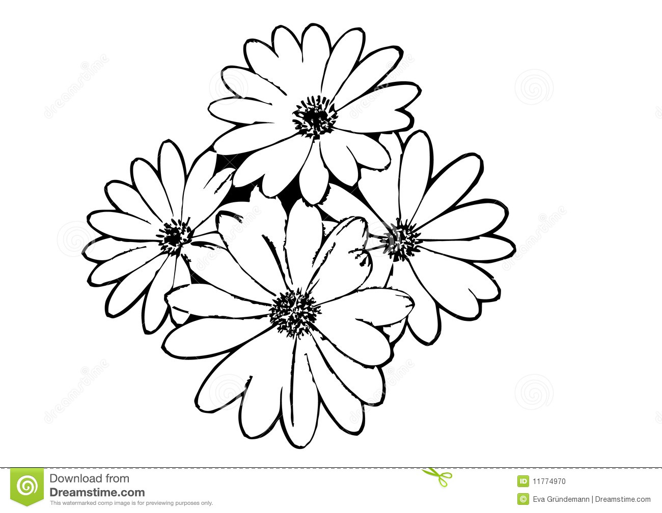 Flower Outline Drawing : Outline flower vector images lily drawing