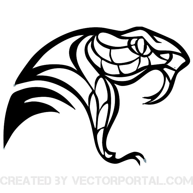 13 Snake Head Vector Images