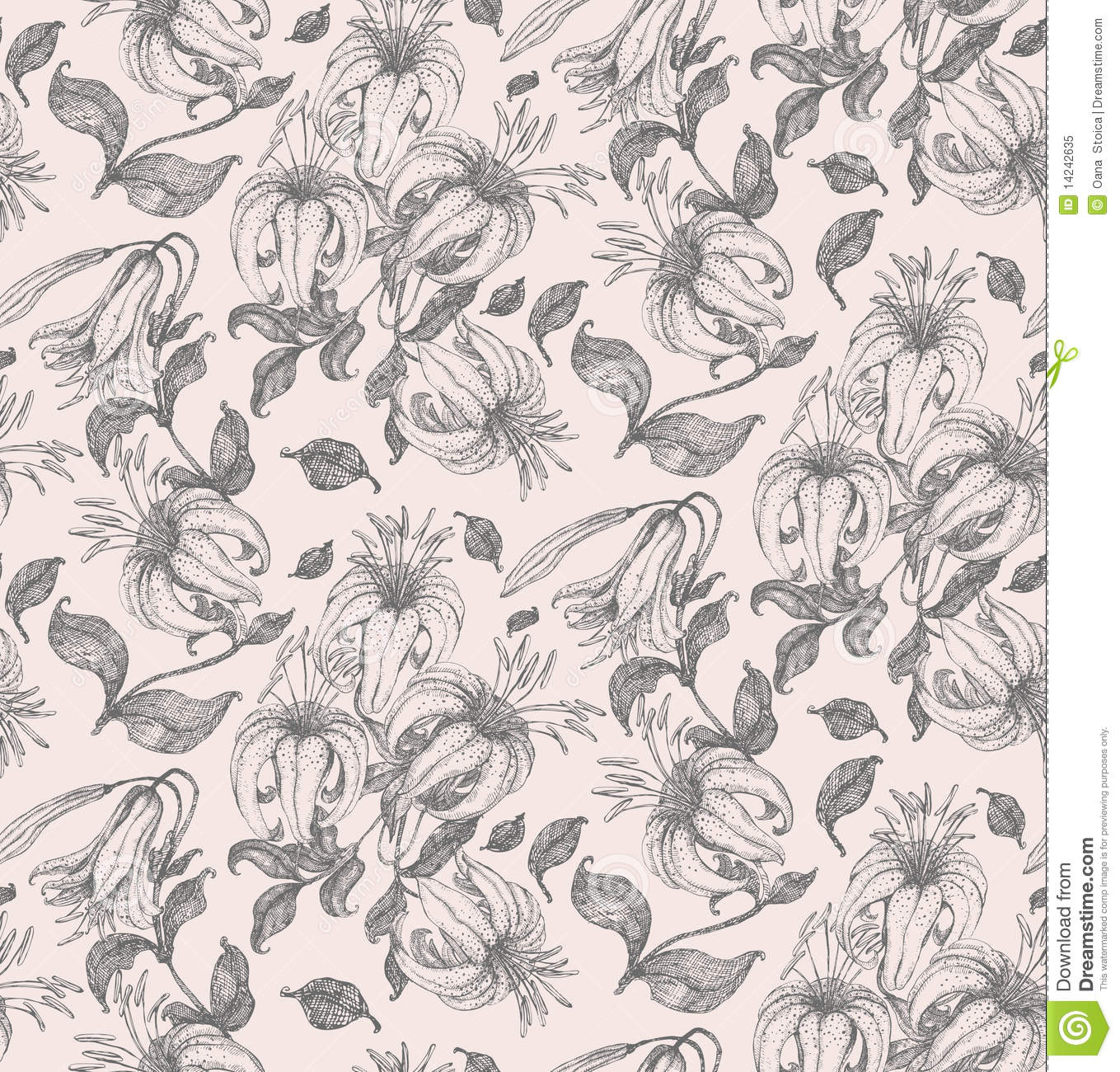 Calla Lily Drawing Pattern