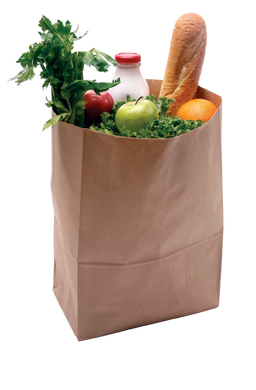15 With Food Grocery Bag Icon Images