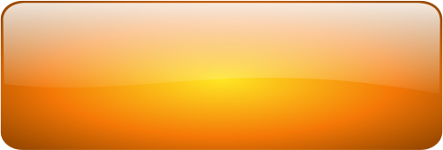 12 Orange Rectangle Button Icons PNG Images