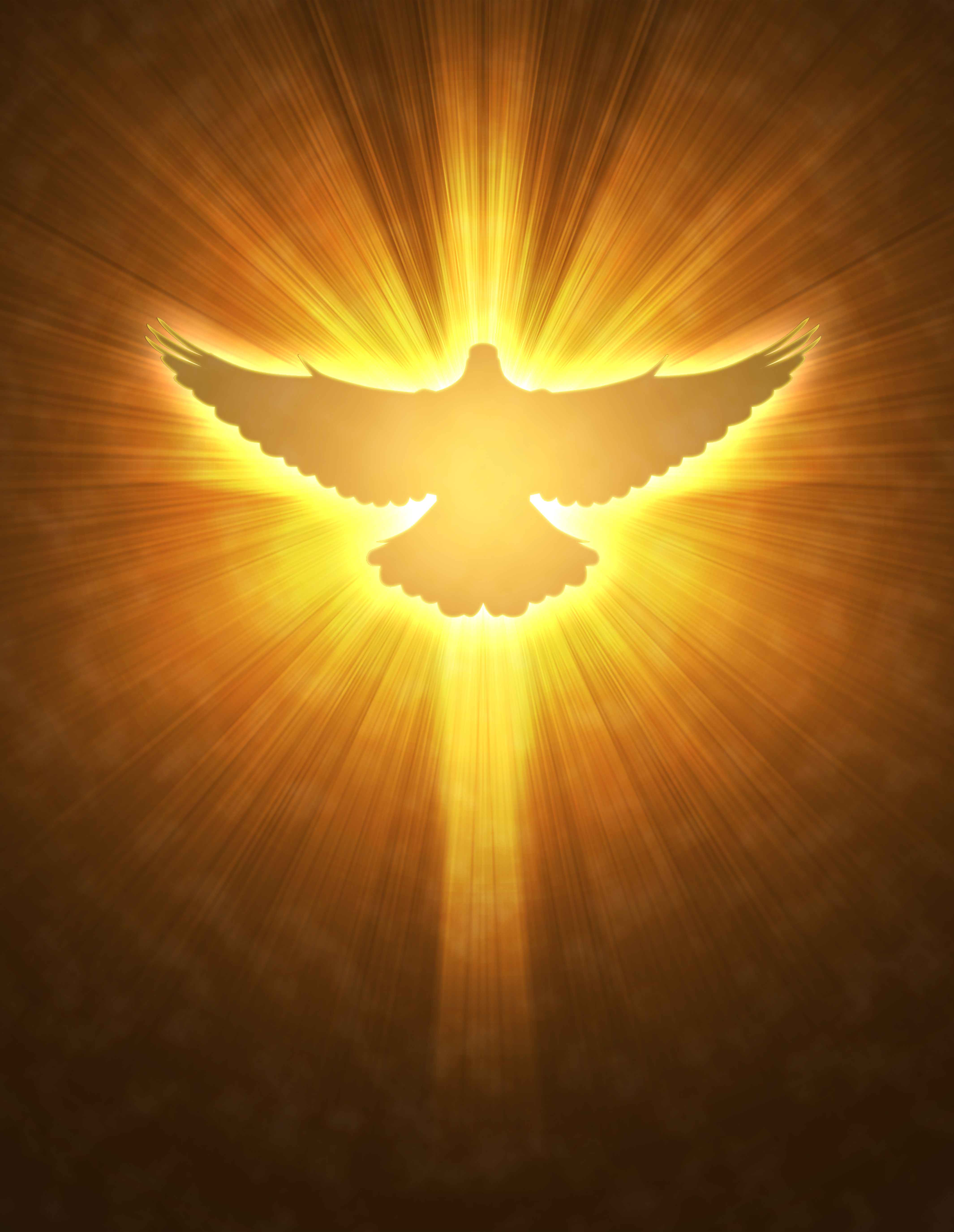 Catholic Holy Spirit Dove