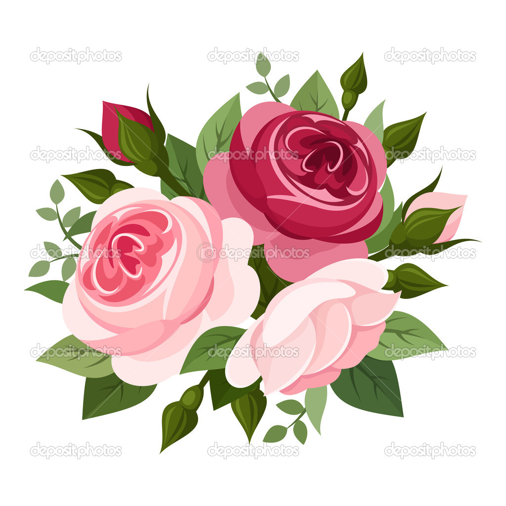 11 Pink Rose Vector Images