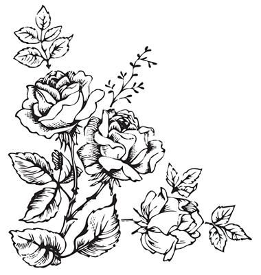 12 Antique Rose Vector Images
