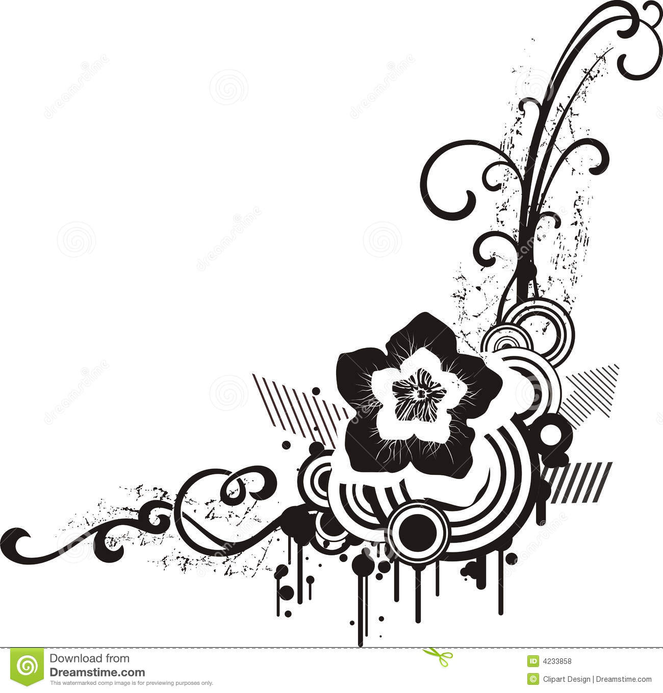 Black and White Floral Designs
