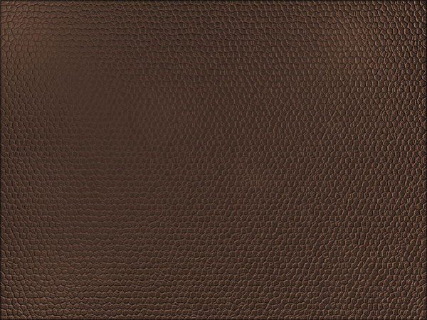 13 Leather Texture Photoshop Tutorial Images