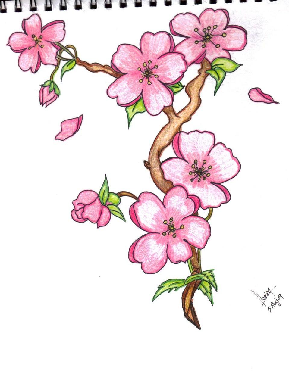 16 Flower Designs Drawings Images