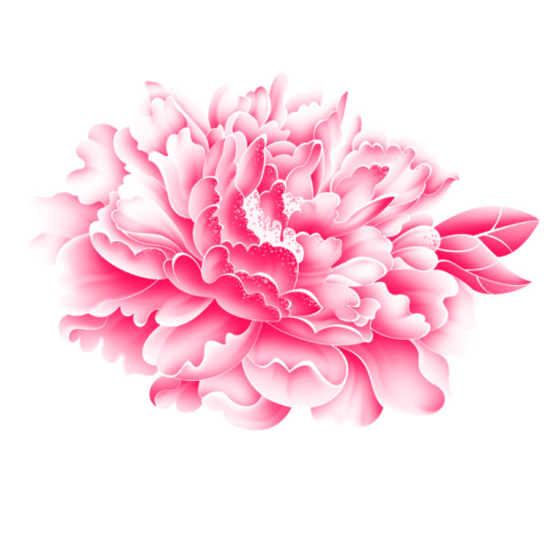 Free PSD Graphics Download Flower