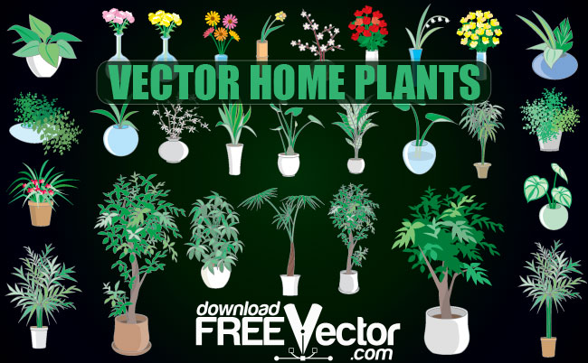 Realistic Plant Vector