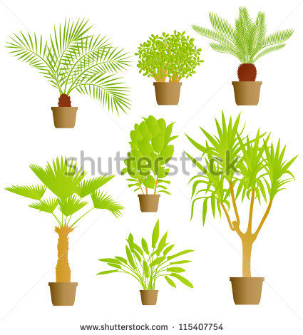 Vector Houseplants