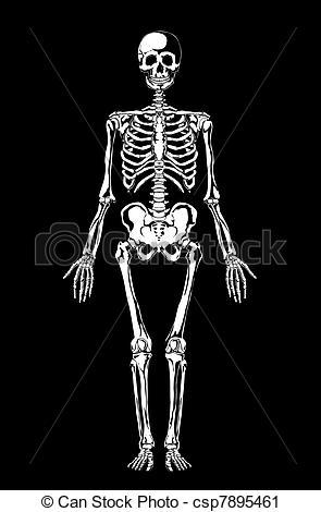Black and White Skeleton