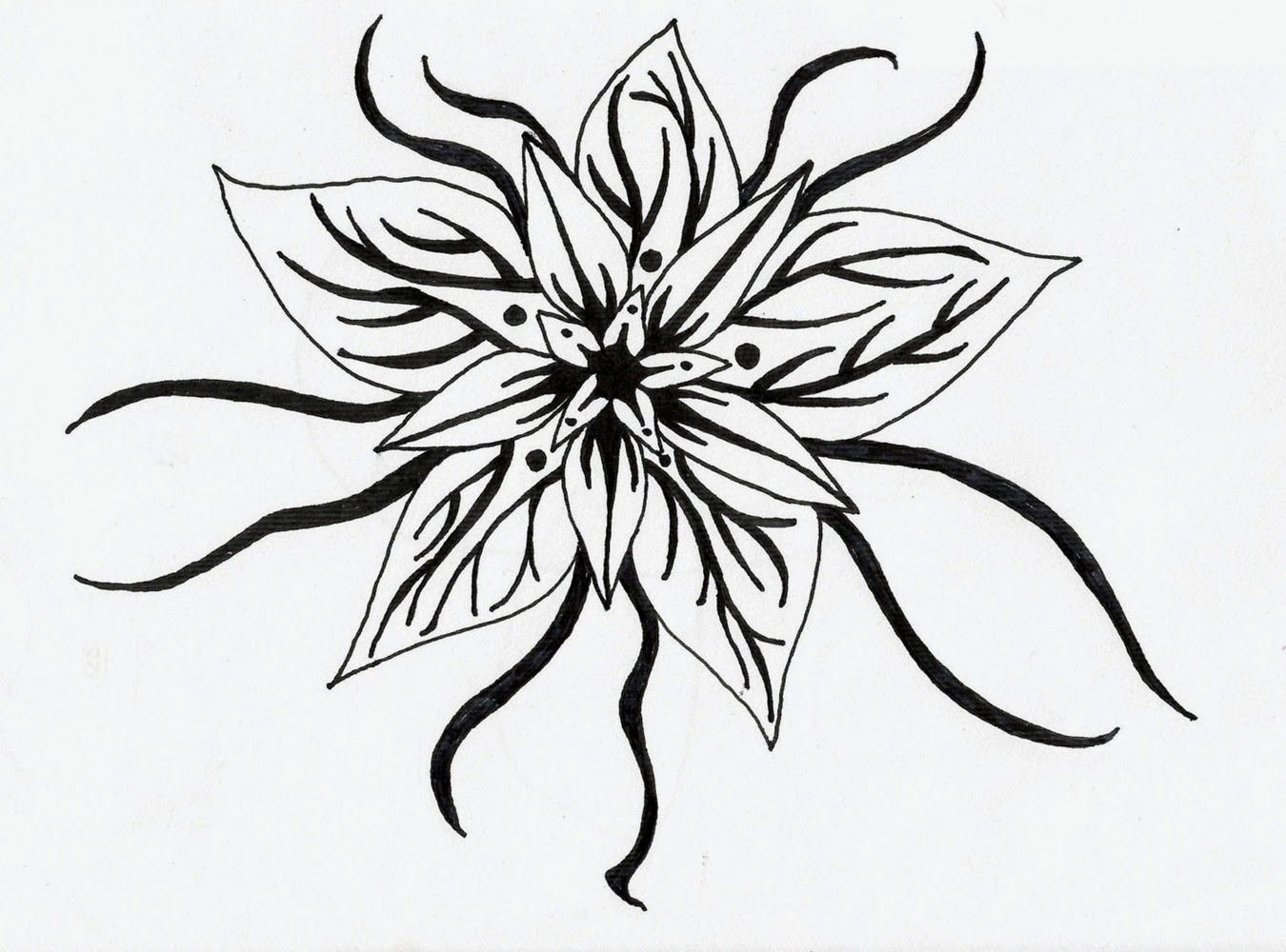 14 black and white floral designs images black and white for Cool designs in black and white