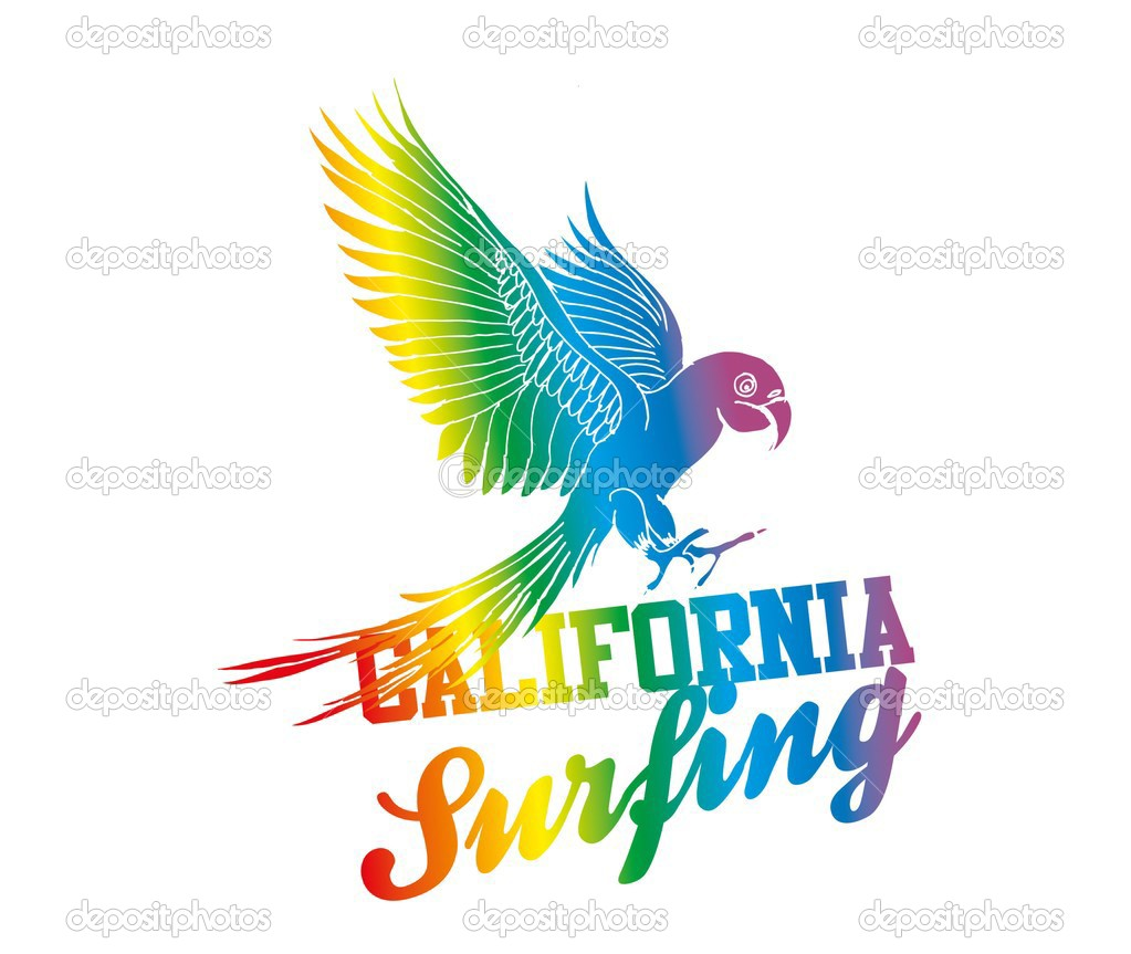 Parrot Vector Art Beach