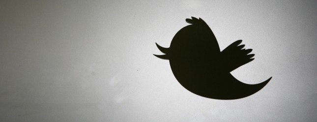 10 Chrome Twitter Icon Images