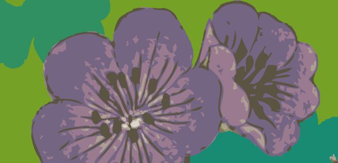 Purple Flower Vector Art