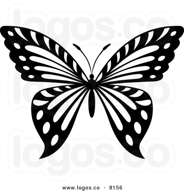 9 Black And White Butterfly Graphics Images
