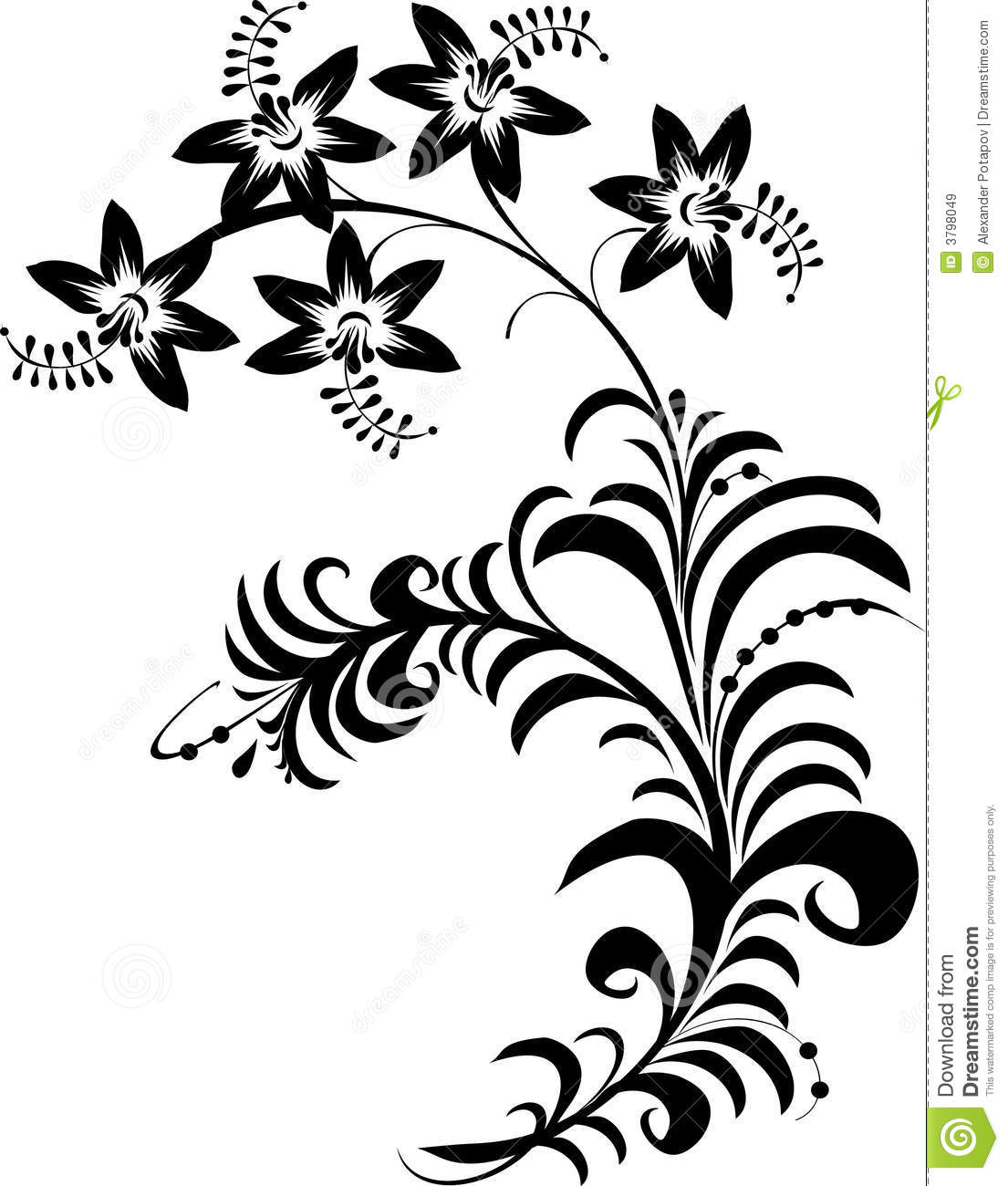 Black And White Line Drawing Flowers : Black and white flower graphics images