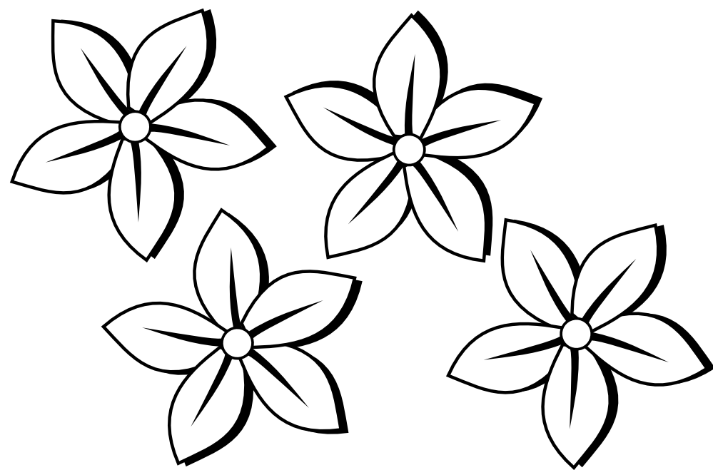 Black and White Flower Line Drawings