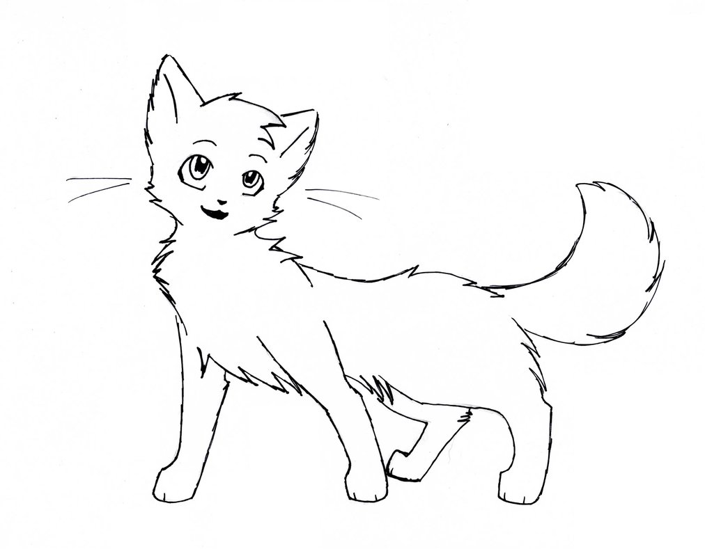Cat Outline Drawing