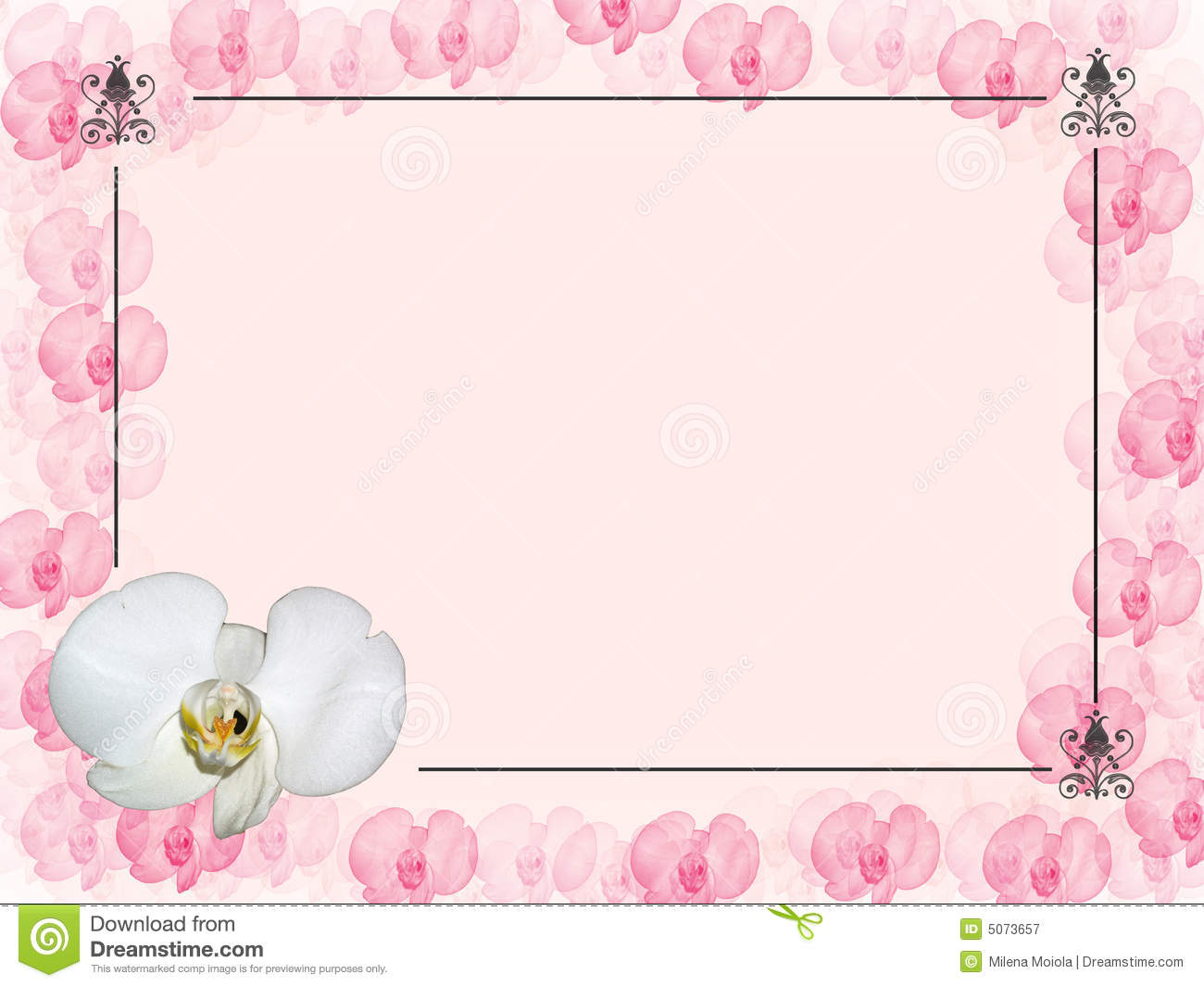 Floral Designs with Orchids