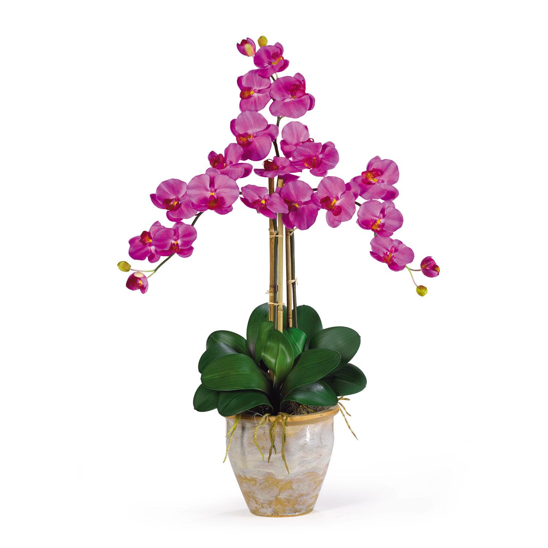 16 Orchid Floral Design Images Orchid Silk Flower