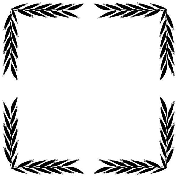 Free Graphic Design Borders