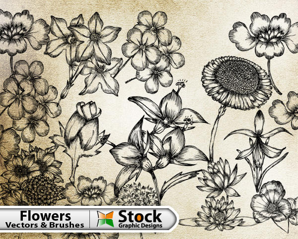 17 Free Hand Drawn Flowers Vectors Images