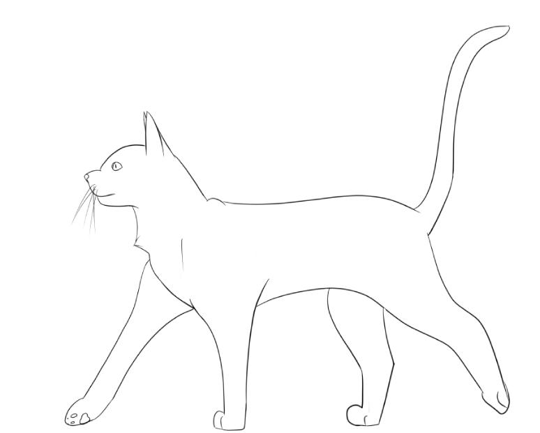 Line Drawing Cat Walking