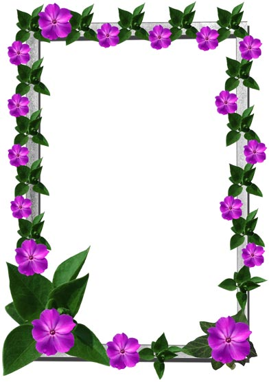 Photoshop Flower Borders and Frames