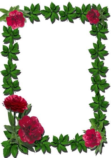 Photoshop Flower Frame