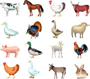 Realistic Farm Animal Clip Art