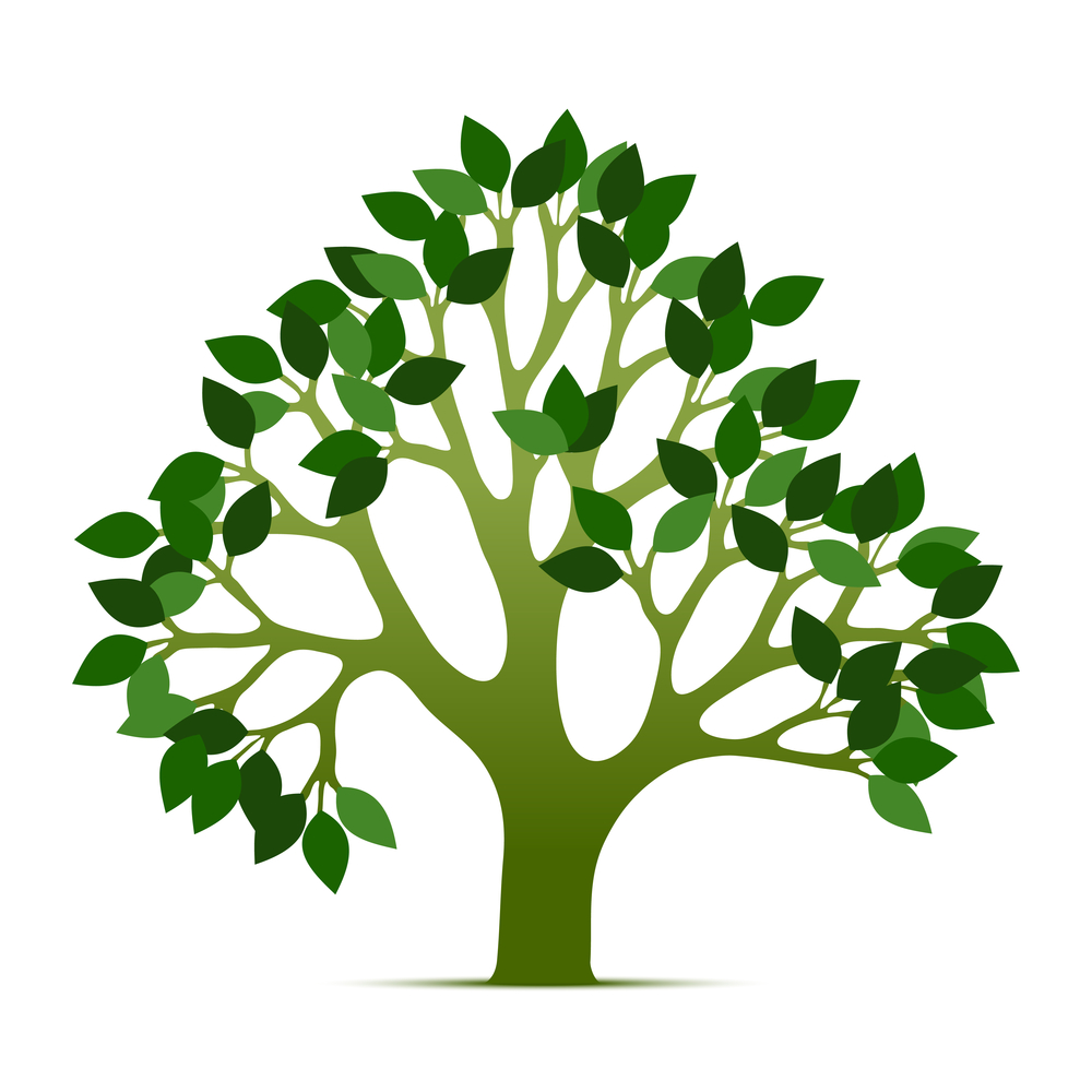20 Tree Of Life Vector Images