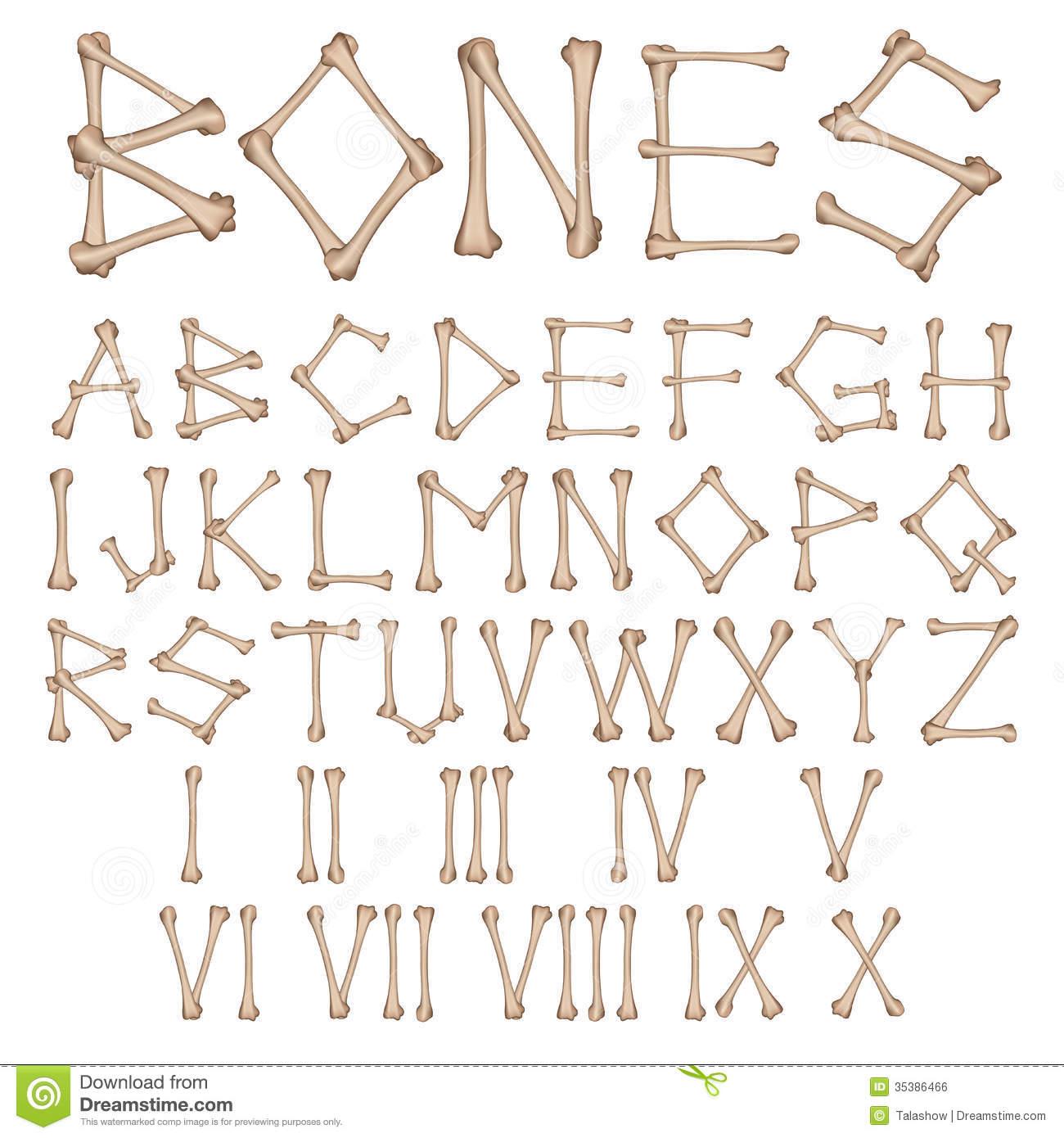 13 2 Skeleton Number Fonts Images