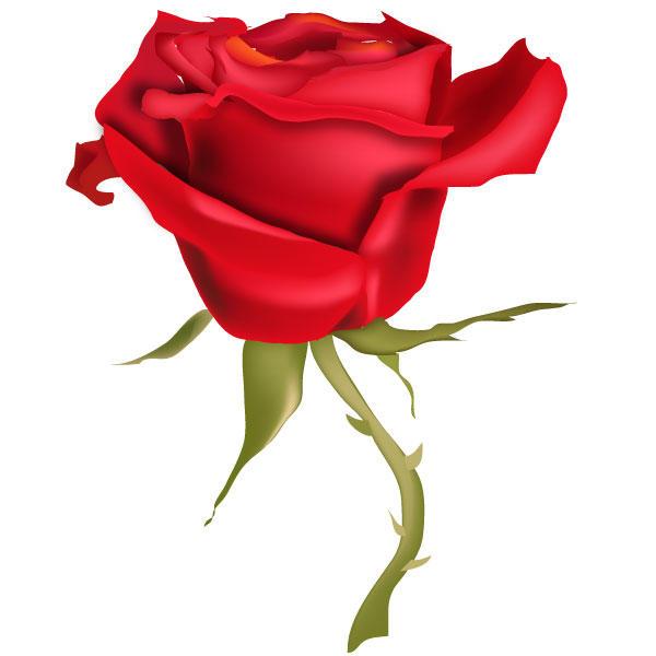 Free Rose Vector Art