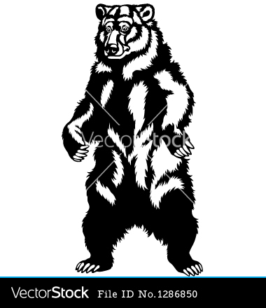 Grizzly Bear Standing Clip Art