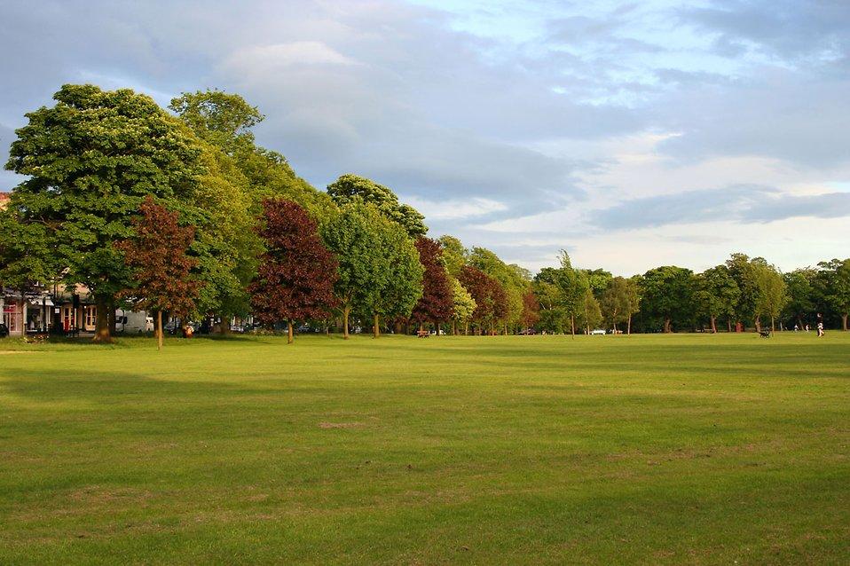 Public Landscape Park