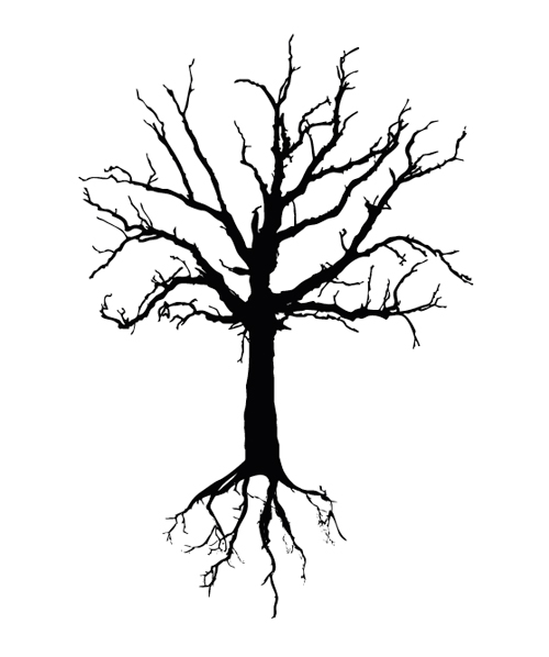 14 Tree Root Line Vector Images
