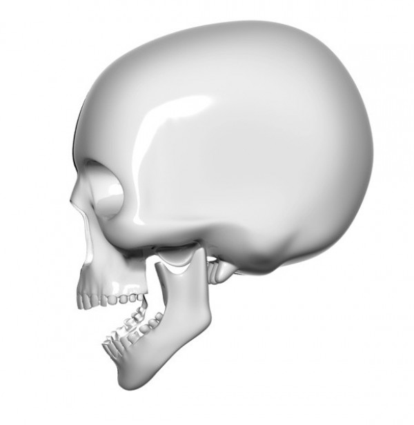 Skull Side View Icon