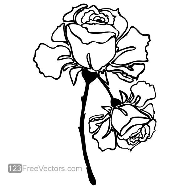 Vector Hand Drawn Rose