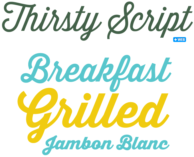 14 Photos of Retro Script Font