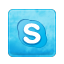 Social Media Icons Skype