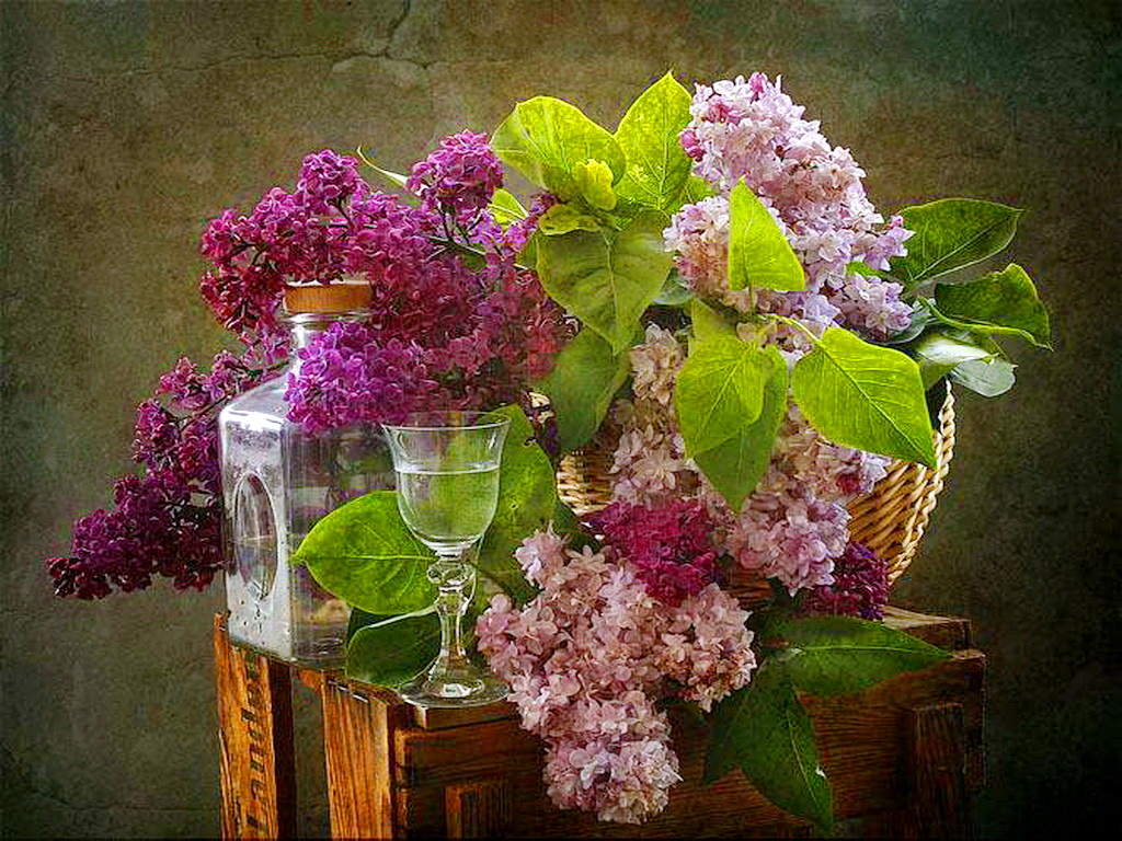 Spring Flower Wallpaper for Desktop Lilacs